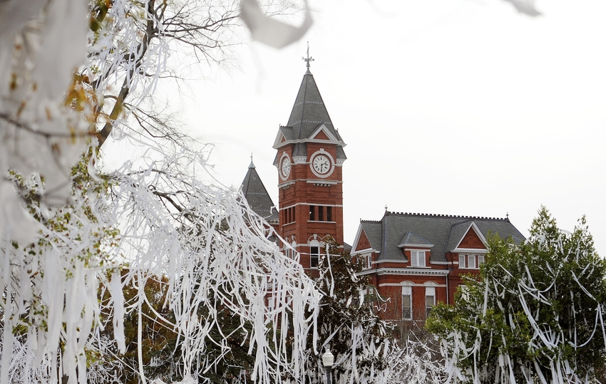 auburn university application essays Application essay auburn university has made a campus-wide commitment to sustainability by signing the american college and university presidents.