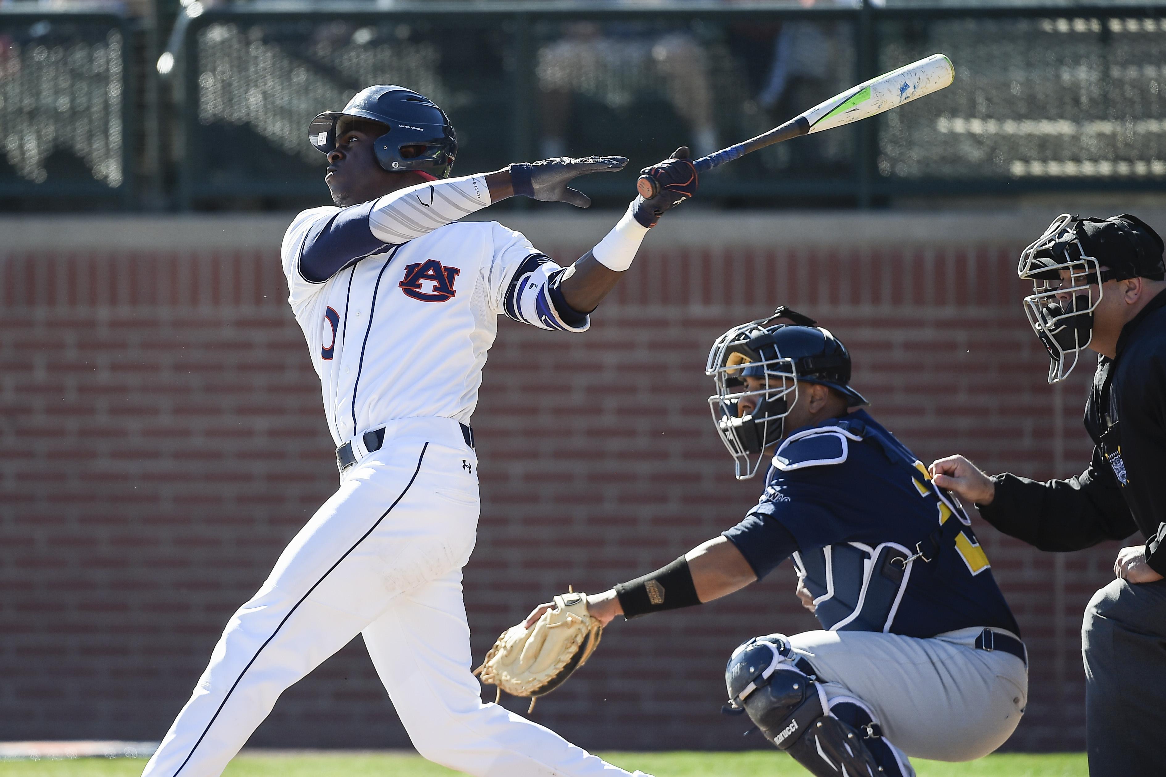 Auburn Doubledays Baseball